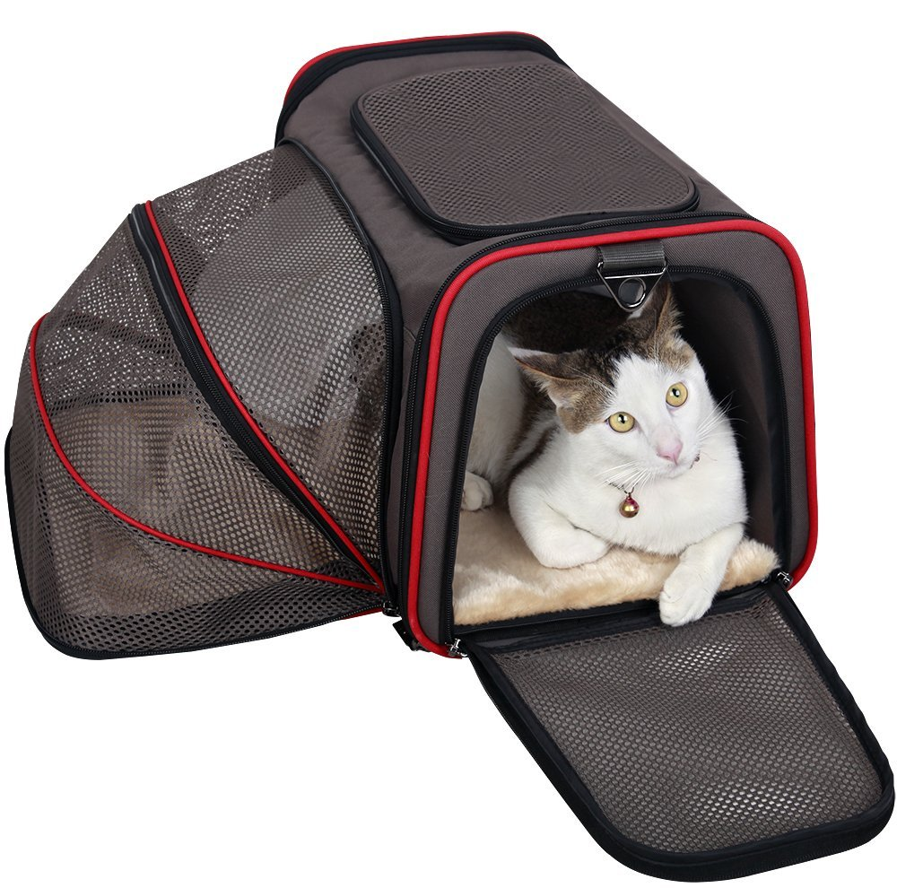 Image result for best cat carriers