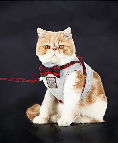 Top Feline Cat Harnesses Reviews