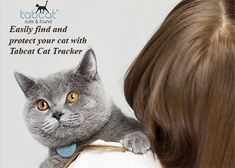 Best Gps Chip Trackers For Cats