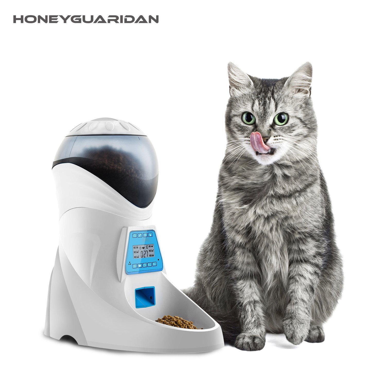 Best Automatic Dry Cat Food Dispensers (with Timers)