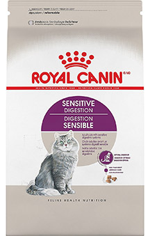 Best Cat Food for Sensitive Stomachs and Diarrhea
