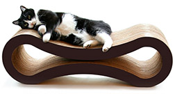 Best Cat Scratching Posts for Large Cats (+Maine Coons)