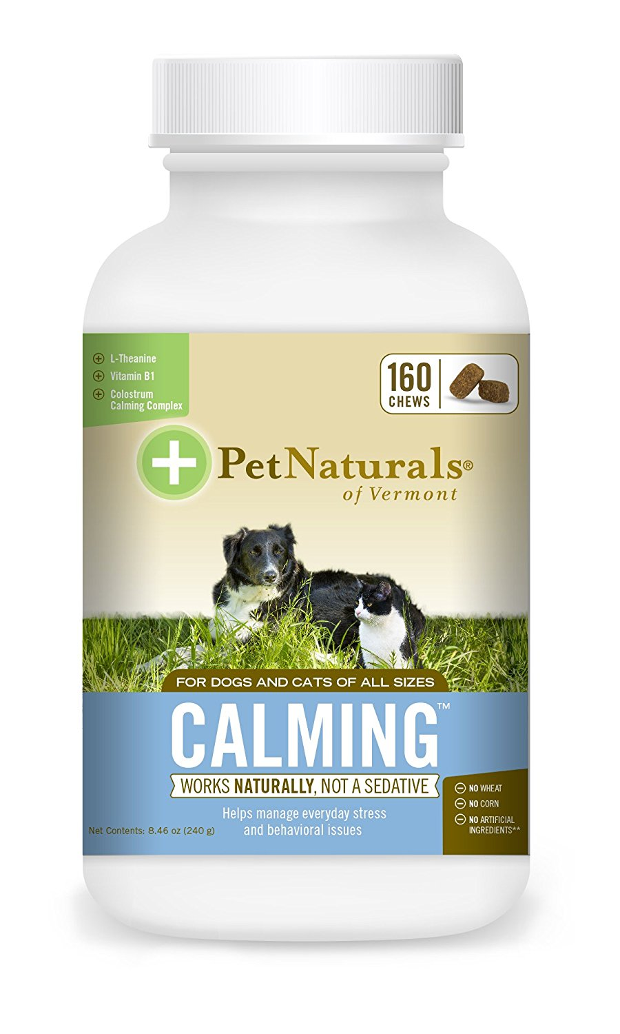 Best Calming Supplements for Cats