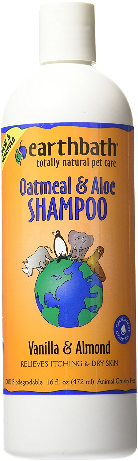 Best Shampoo for Maine Coons